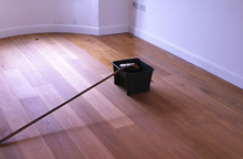Glossed Flooring Exeter